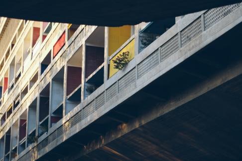 05_Le Corbusier_Marseille