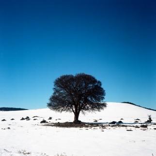 Rolleiflex-Maroc050-copie-1020x1024
